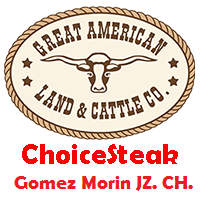 Choice Steak